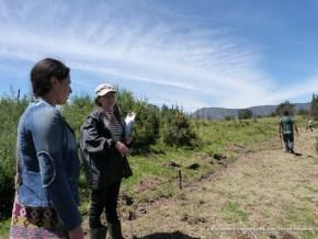 Guías de la fundación Torca Guaymaral