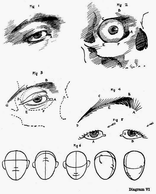 Diagram VI. ILLUSTRATING SOME POINTS CONNECTED WITH THE EYES NOT ALWAYS OBSERVED IN DRAWING A HEAD