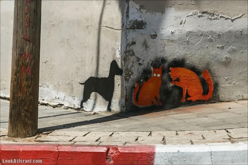 Кошачье-собачье граффити Тель Авива
