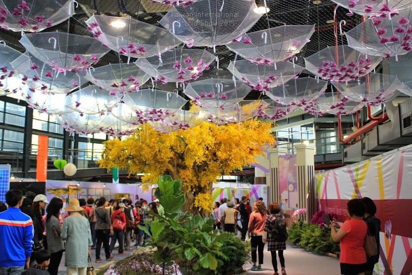 2015 台灣國際蘭花展地址-9