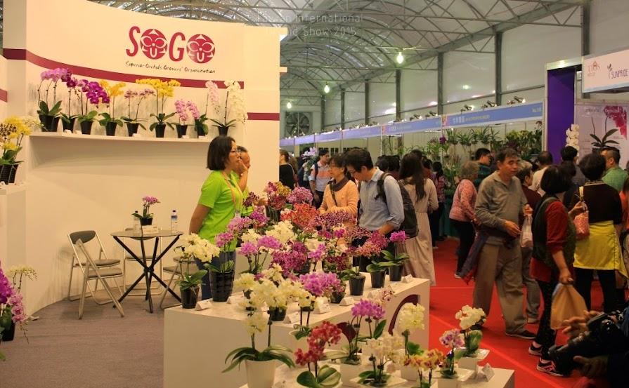 2015 台灣國際蘭花展時間-5
