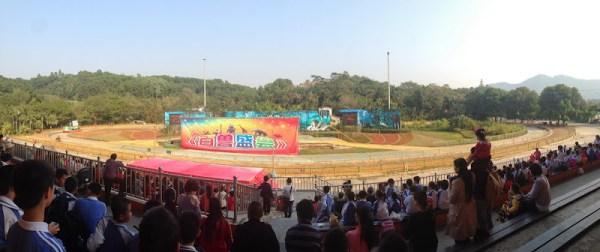 深圳野生動物園馬戲