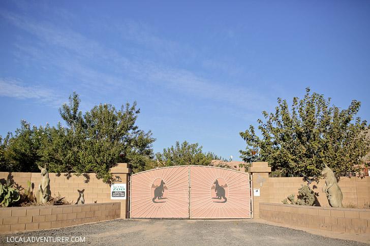 Roos n More Zoo in Las Vegas NV.