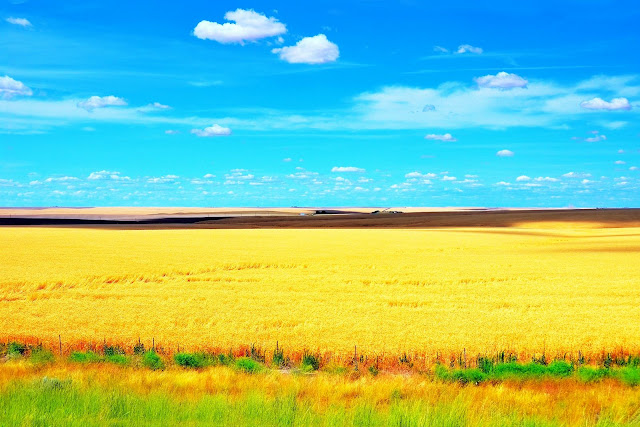 Farm view by I-90 West (MP 215)