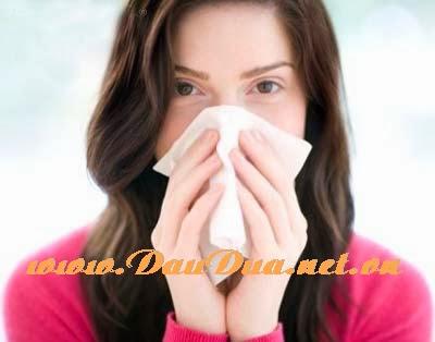 Tinh dầu dừa sẽ là vị cứu tinh trị viêm xoang viêm mũi cho bạn