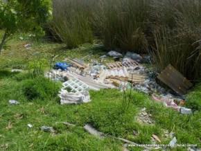 Residuos sólidos en el Humedal Tibanica