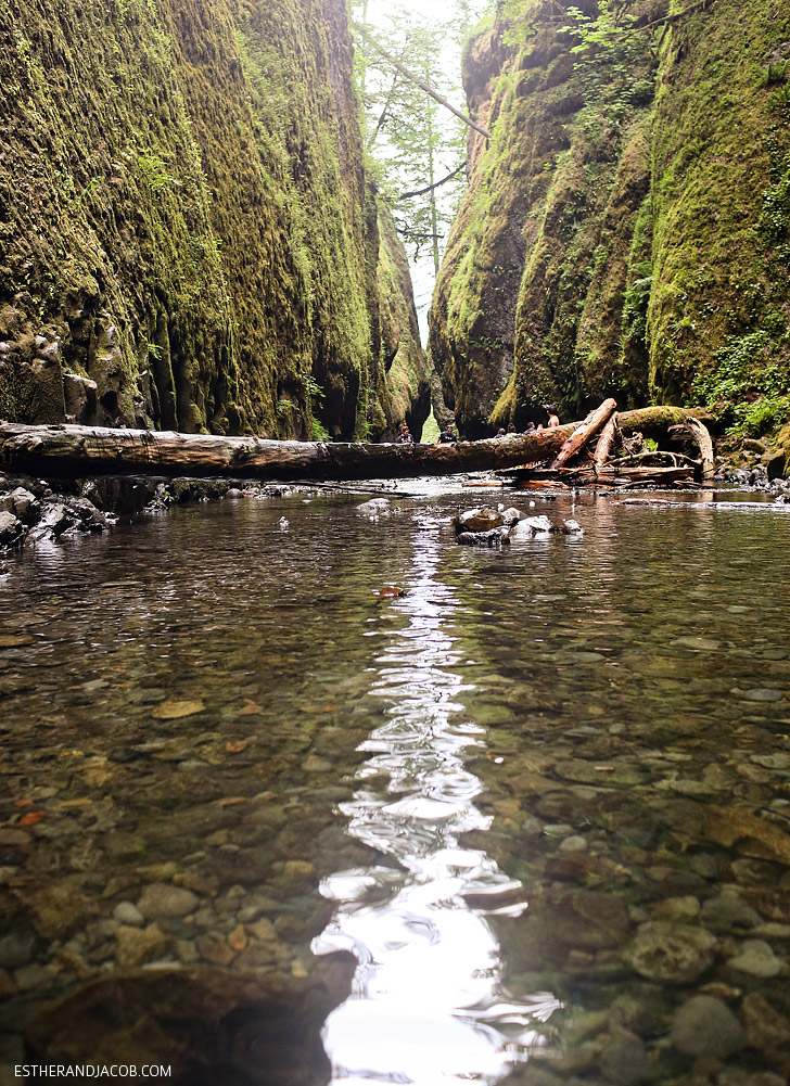 Oneonta Gorge Hike Portland Oregon.