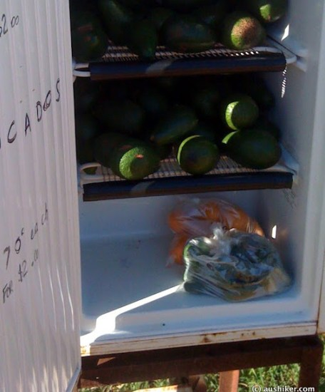 Orange Springs Road fruit stand
