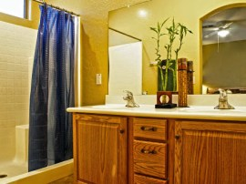 Selling my Gilbert AZ home -  showcases this master bathroom by Gilbert Realtors