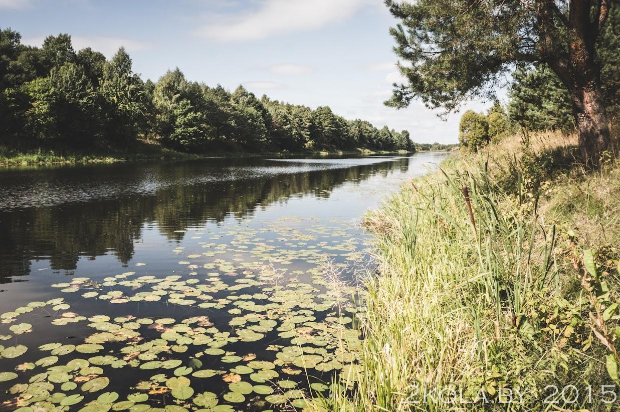 Дняпроўска-Бугскі канал