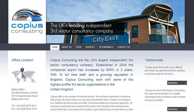 Copius Consulting web design screenshot