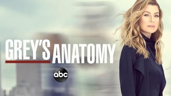 Grey's Anatomy - Season 13 - Promo, Cast Promotional ...