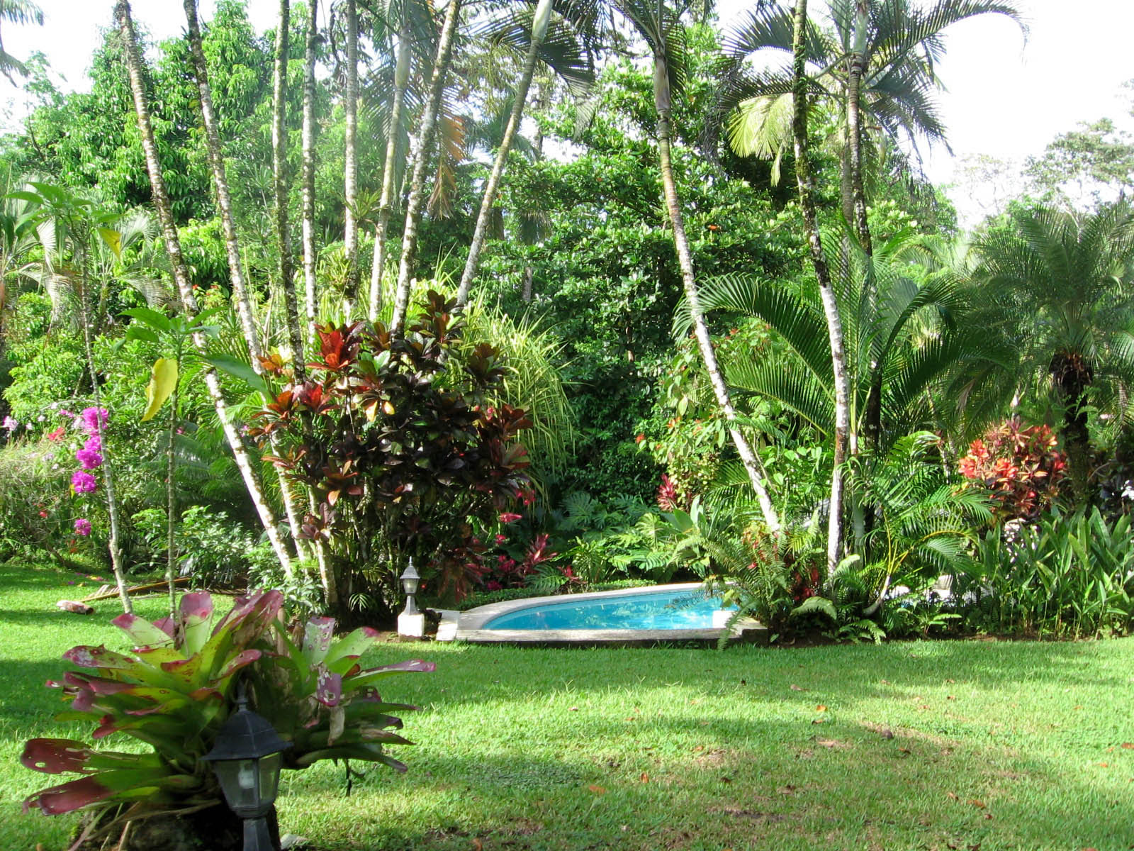 21+ Beautiful Tropical Landscaping Ideas Photos ... on Tropical Backyard Landscaping Ideas  id=14359