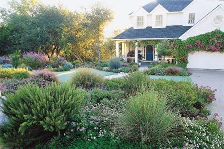 Landscape Design Ideas Without Grass on No Grass Garden Ideas  id=15950