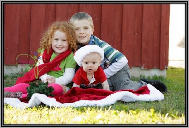 Christmas-Mini-Sample-4600