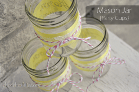 Pink Lemonade Mason Jars MAIN_edited-1