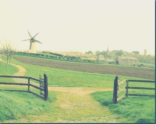 skerries windmill2