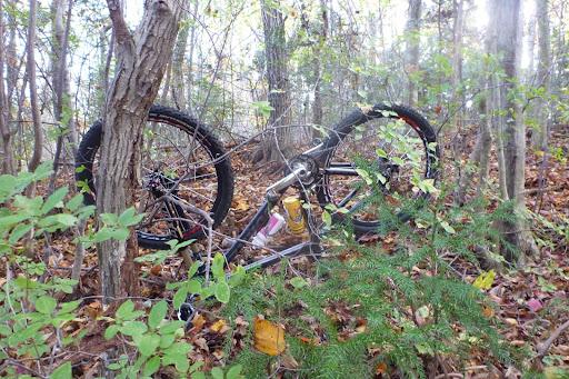 調子に乗ったら落ちましたw ゴロゴロゴロってw 自転車の向こうにある木のさらに上が走っていたトラックなので、結構落ちましたねw このあと仲間内からゲラゲラ笑われてしまうのがMTBの醍醐味。転んだ本人も笑いながら起き上がるし。あ〜楽しいw
