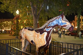 It's Aggie, short for Agate, downtown on the square in Ocala