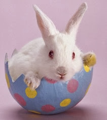 easter-bunny-wallpaper
