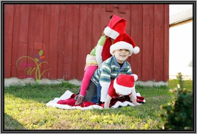 Christmas-Mini-Sample-4692