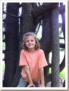 sweet girl in a cool tree