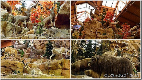 05 Stuffed animals at Cabela's collage (1024x576)
