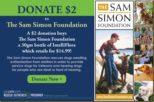 Sam-Simon-Foundation-donate-now2