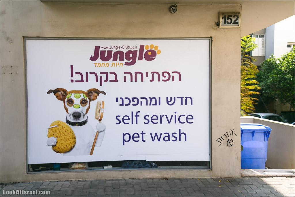 Крошки Тель Авива, часть 1