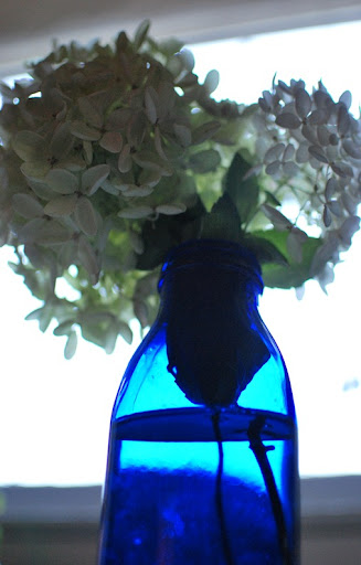 glass, pillow, hydrangeas 032