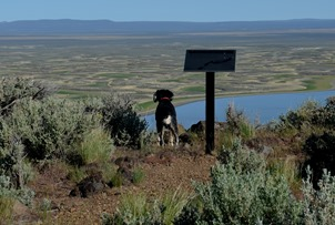 Abby checking out the Warner Valley Overlook