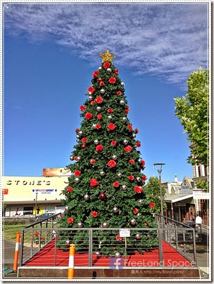 2014 聖誕維省 & 南澳自駕遊 day 1