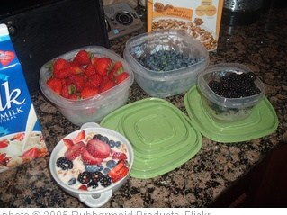 'Produce Saver & Berries' photo (c) 2005, Rubbermaid Products - license: http://creativecommons.org/licenses/by/2.0/