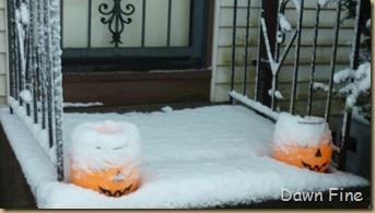 Blizzard Oct 29_012