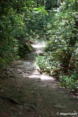 Mingo Falls 8
