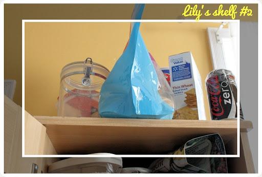 kitchen cupboard pet junk