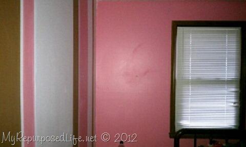 Teen Room Makeover (Zebra Print)