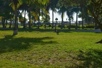 Key West_062