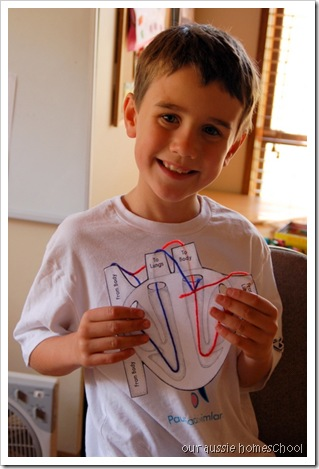 The Heart ~ Our Aussie Homeschool