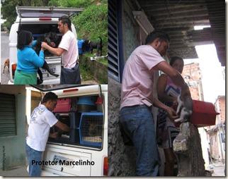 marcelinho_protetor5
