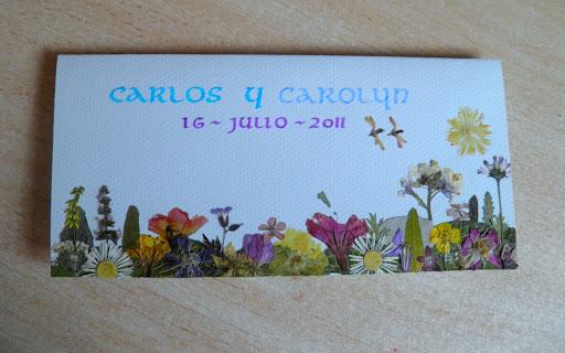 Encargo de Olga para Carolyn Jul. 2011.jpg