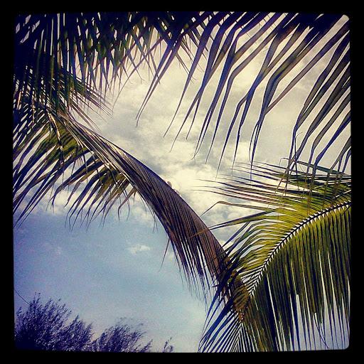 Langit Gold Coast Morib.jpg