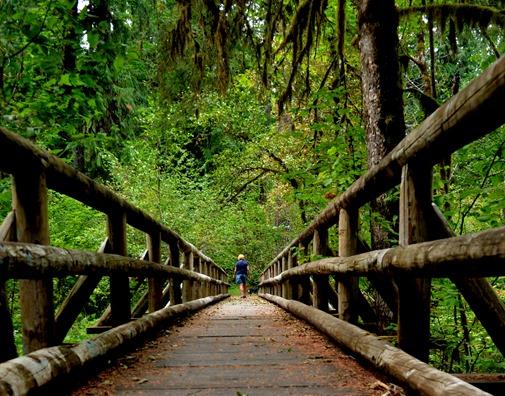 great old bridge across Delta Creek