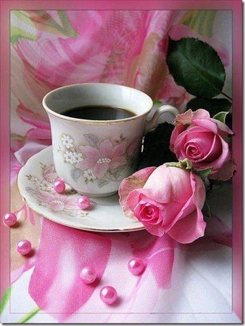 flores-facebook-tumblr-rosas-las flores-fotos de  flores-726