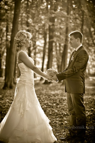 porocni-fotograf-wedding-photographer-poroka-fotografiranje-poroke- slikanje-cena-bled-slovenia-ljubljana-bled-hochzeitsfotografho (95).jpg