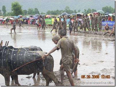 ropai mahotsav, hile jatra pokhara 2008 (4)