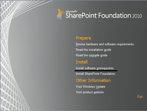 SharePointFoundations1