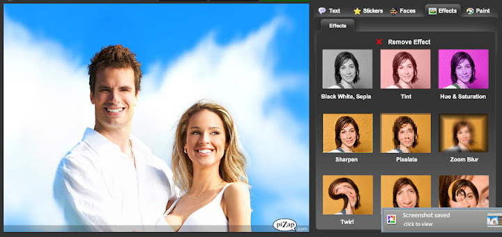 Pizap : Free Online Photo Editor