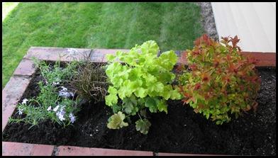 Home Gardening 028