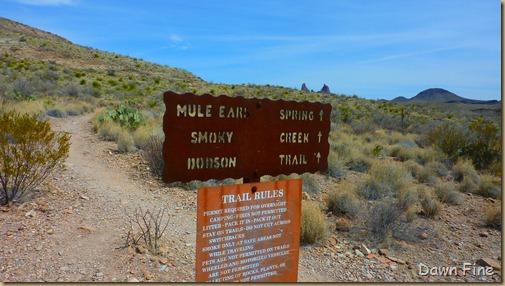 mule ears_001